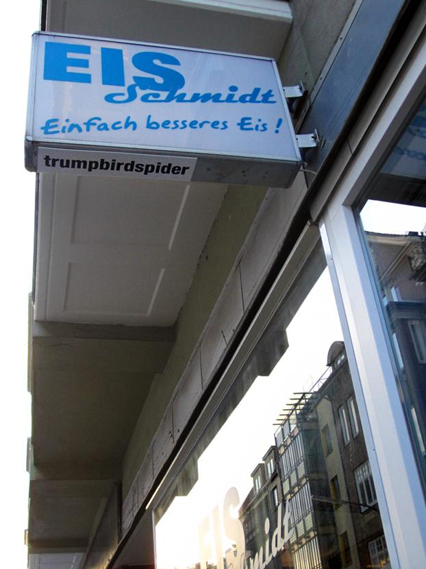trumpbirdspider