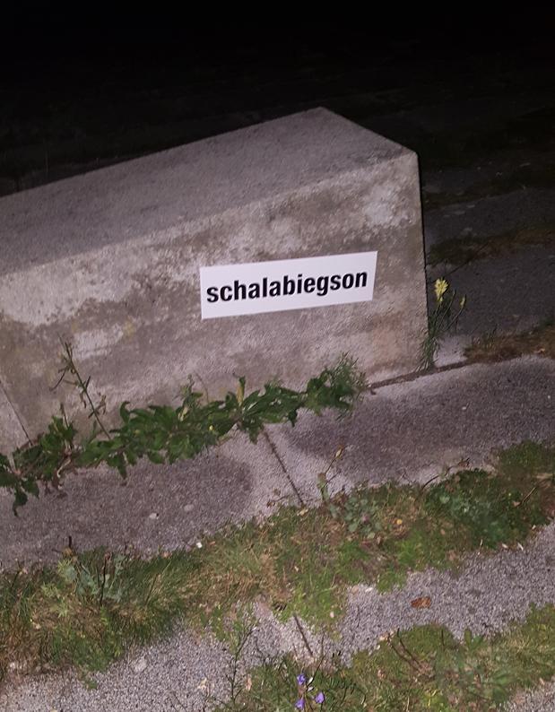 schalabiegson