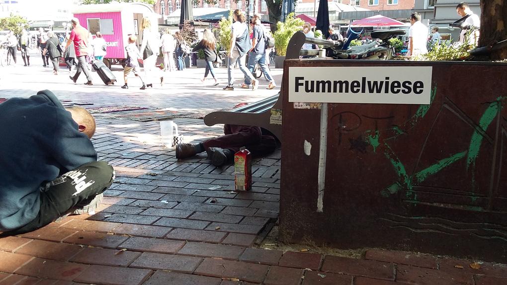 Fummelwiese