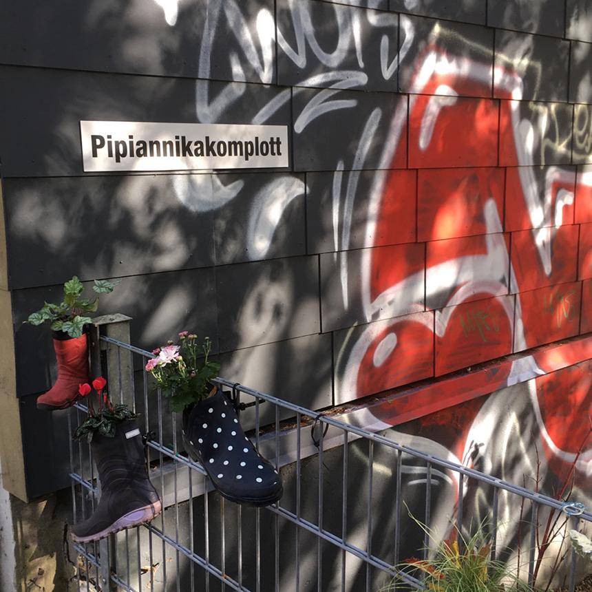 Pippiannikakomplott